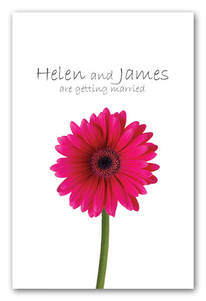 Cerise Hot Pink Gerbera Wedding Invitation