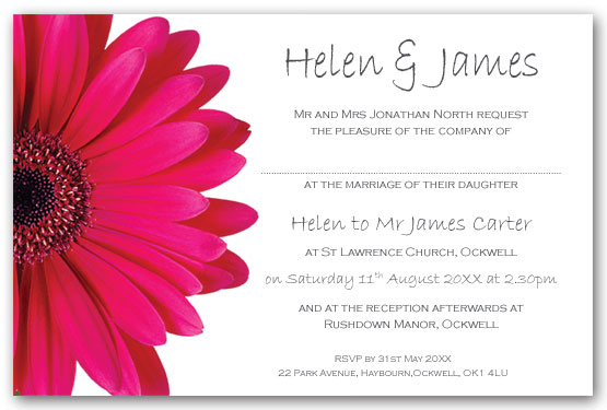 Cerise Hot Pink Gerbera Invitation Postcard