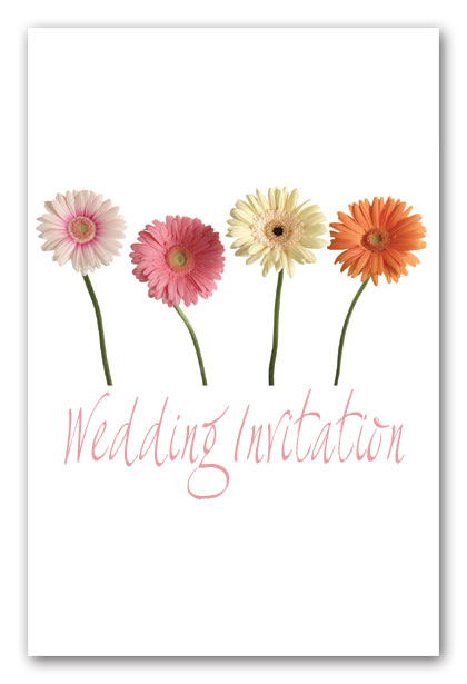 FB53 - Mixed gerberas wedding invitation , all other stationery elements may be provided for this design.