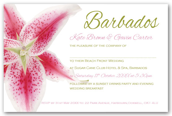Stargazer lily invitation postcard