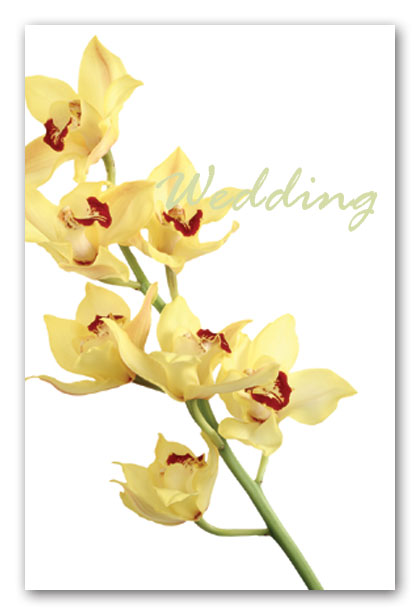 Orchids Wedding Invitation