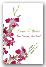 Cerise Orchids Invitation