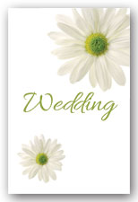 White Daisy Invitation
